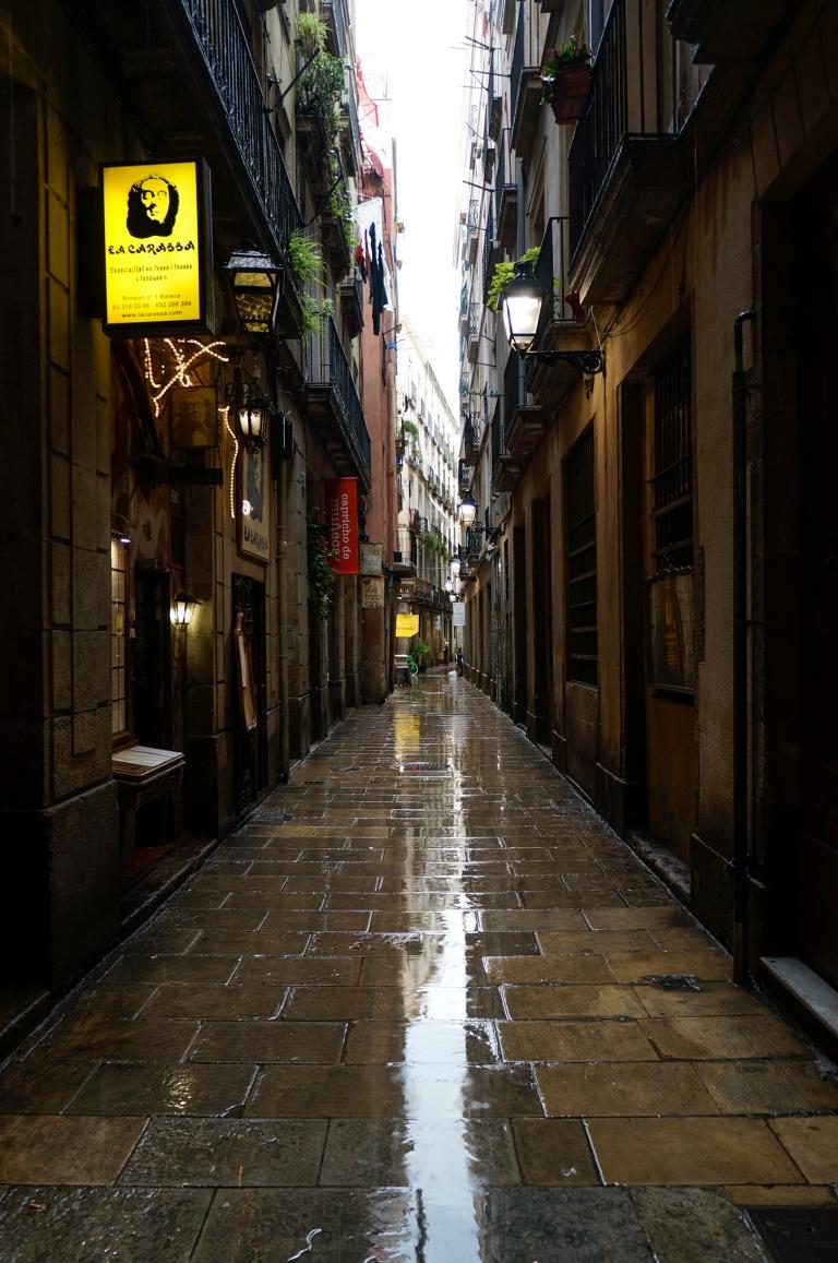 Rainy Born_1