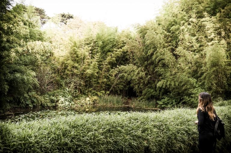 SF Botanical Garden_16