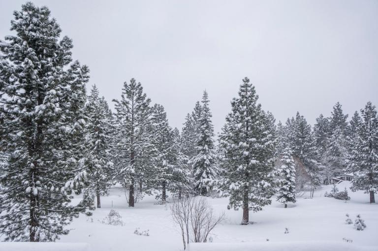 Tahoe_2