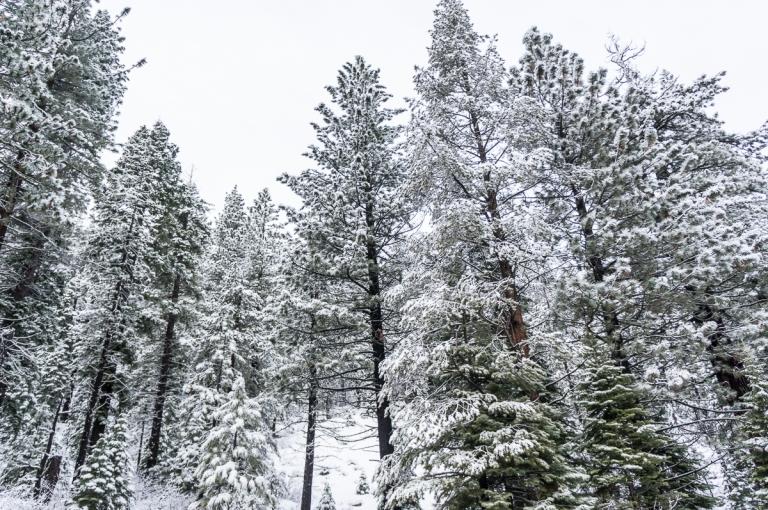 Tahoe_4