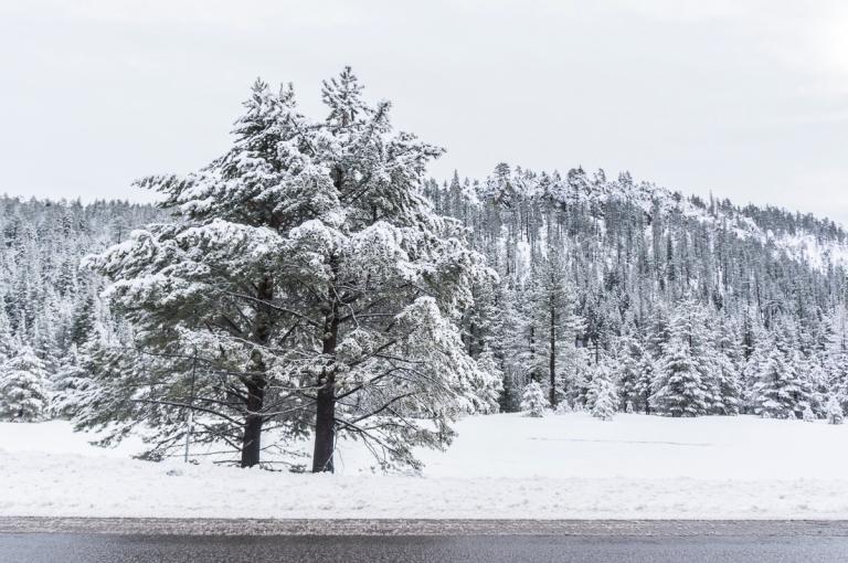 Tahoe_6